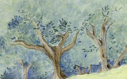 oliveraie château virant
