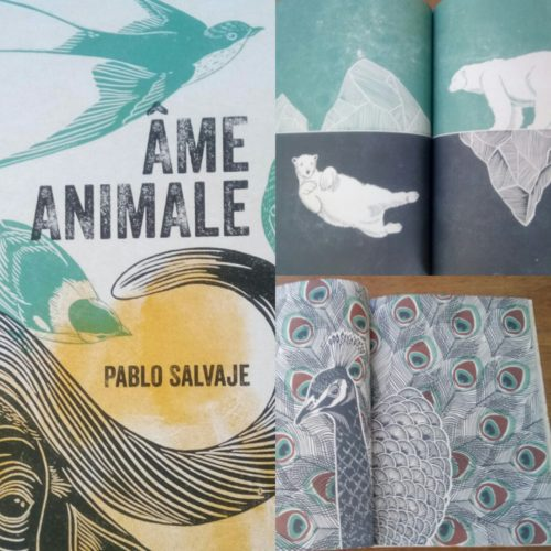 Ame Animale - Pablo Salvaje
